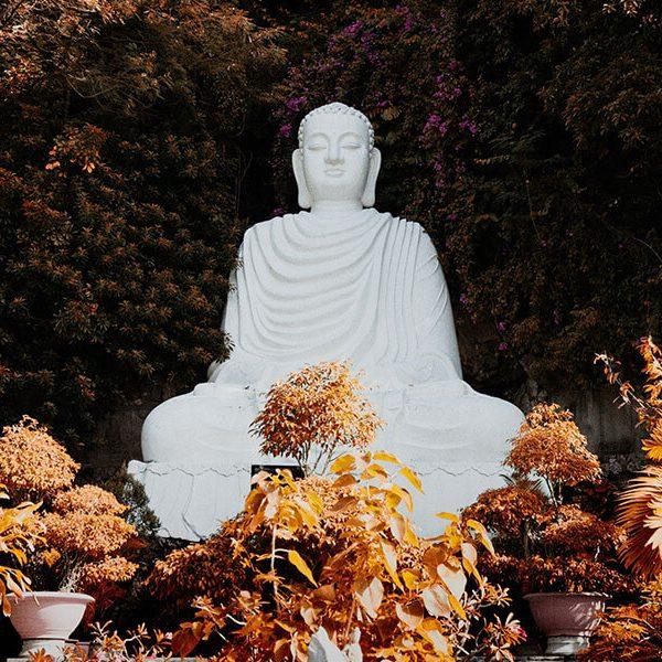 Buddhist Monk Preach